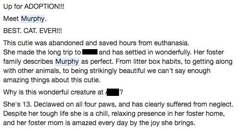 The posting about Murphy on the Shelter's Facebook page.