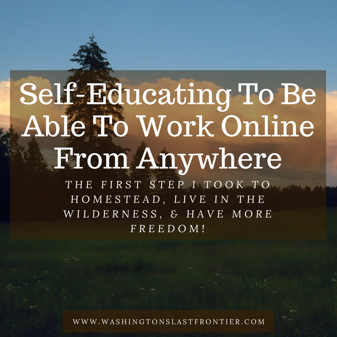 Self educating to be able to work online from home anywhere first steps i took to homestead live int the wilderness and have more freedom.png