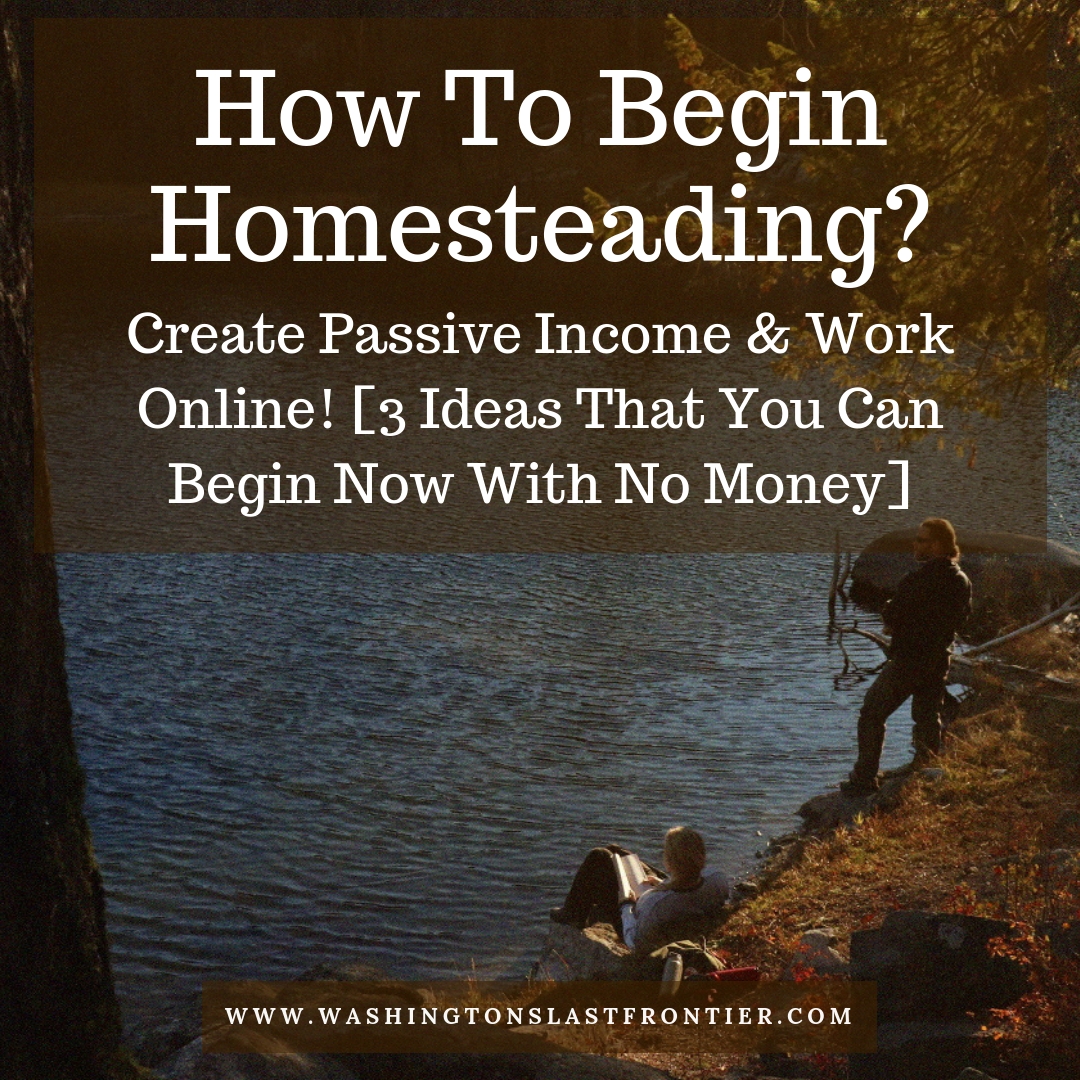 How To Begin Homesteading Creative Passive Income Work Online 3 Ideas With No Money.png