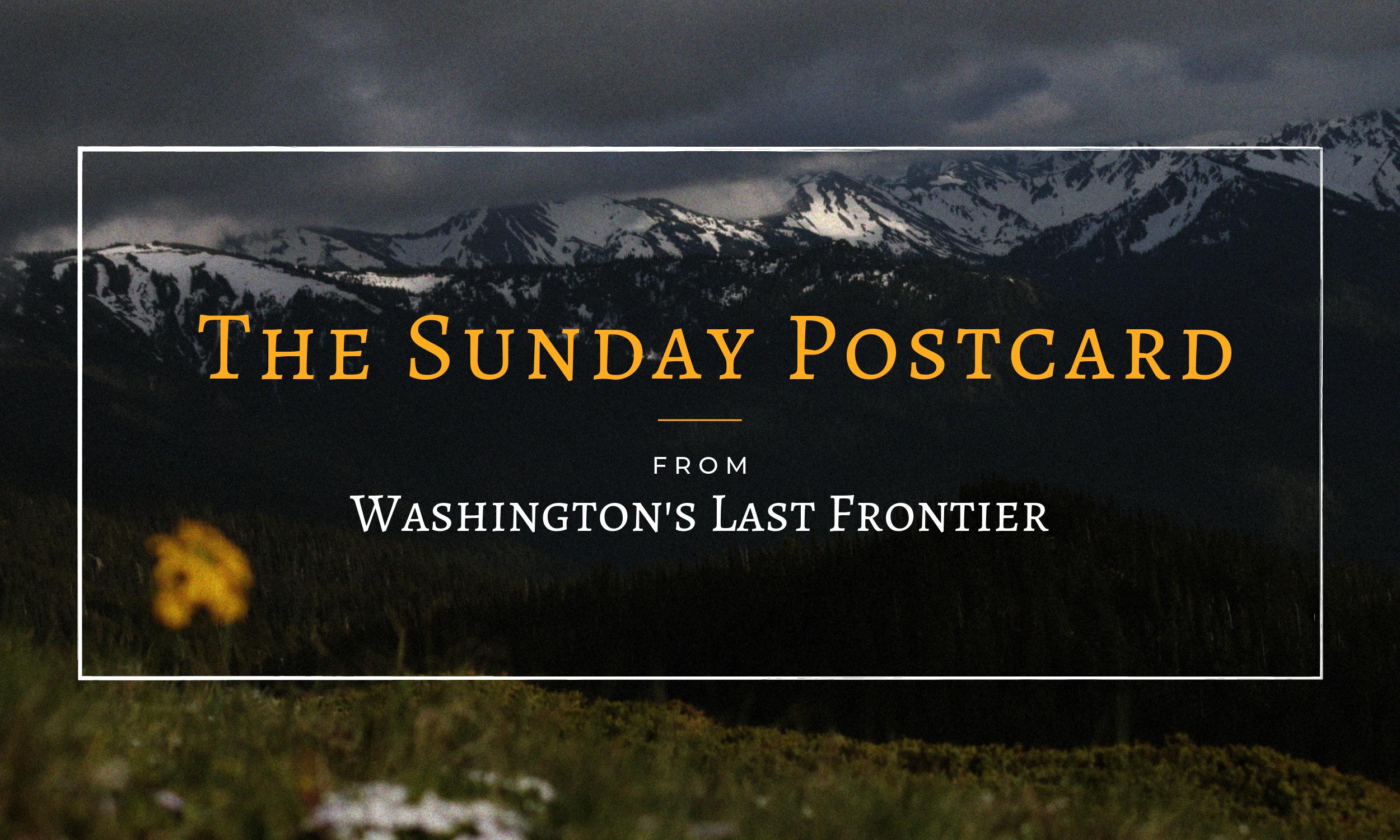 Washington's Last Frontier Sunday Postcard Email Newsletter For Homesteaders Wilderness Living Washington State Inspiration