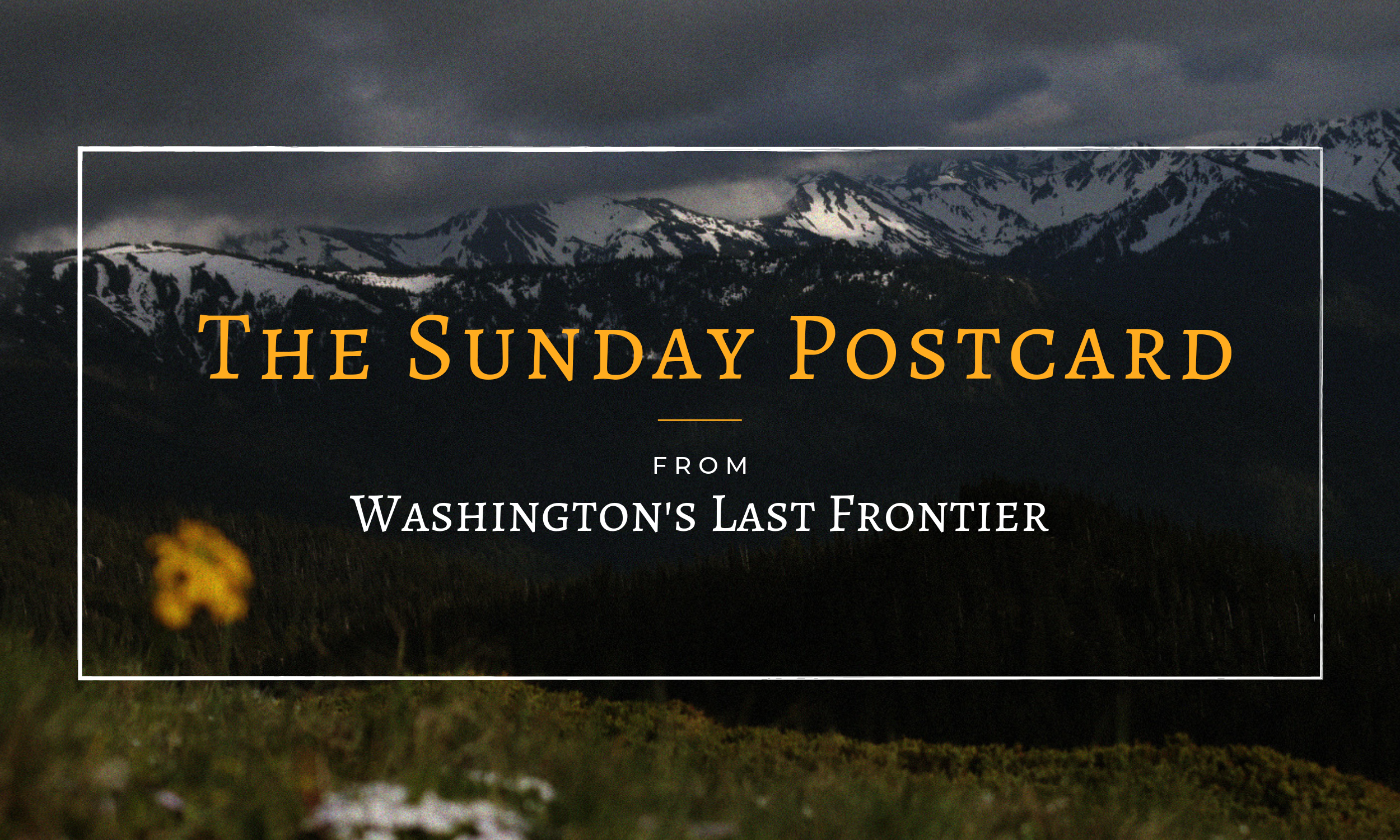 Washington's Last Frontier Sunday Postcard.png
