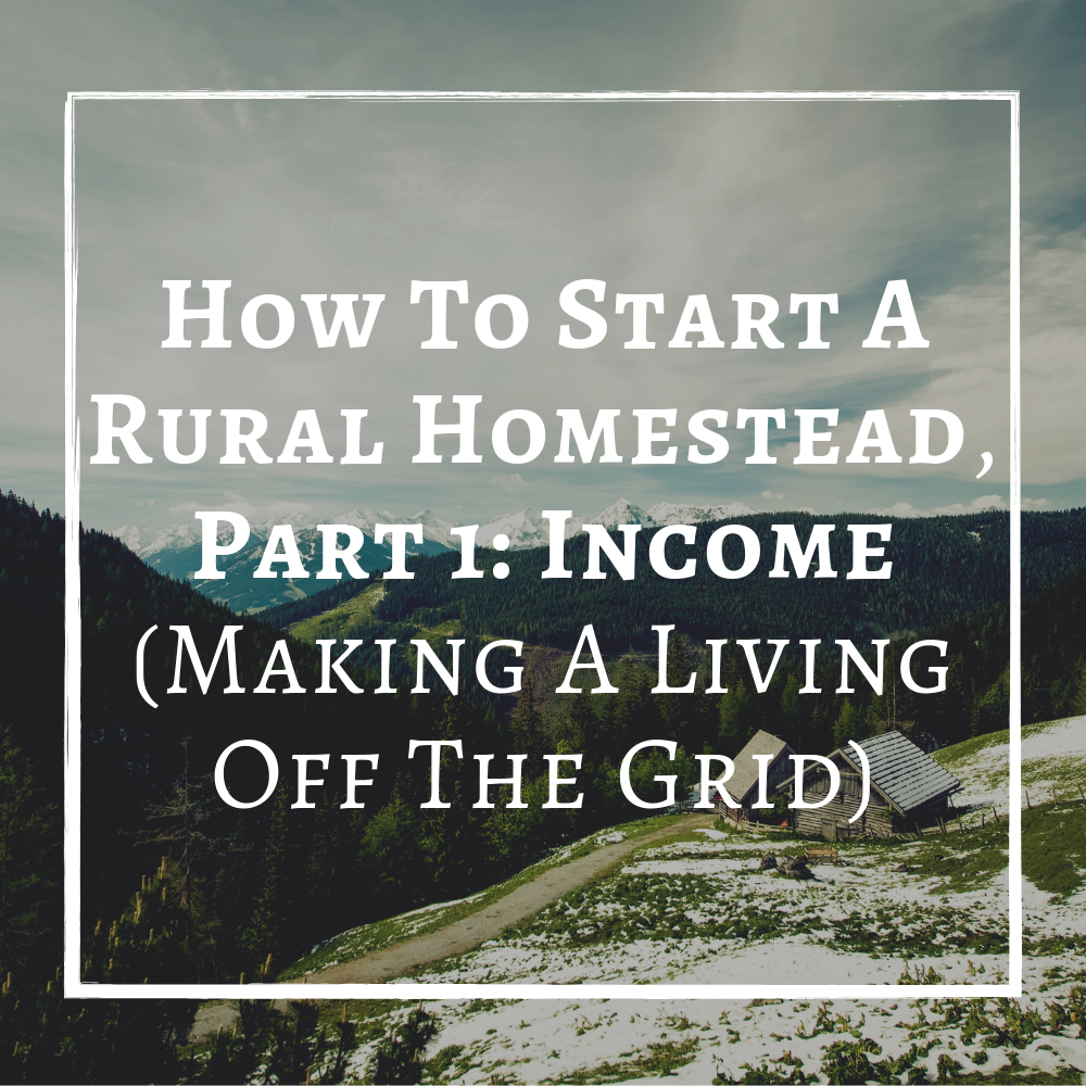 How To Start A Rural Homestead, Part 1 Income Making A Living Off The Grid.png