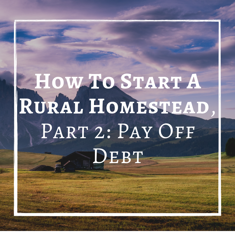 How To Start A Rural Homestead Part 2 Pay Off Debt.png