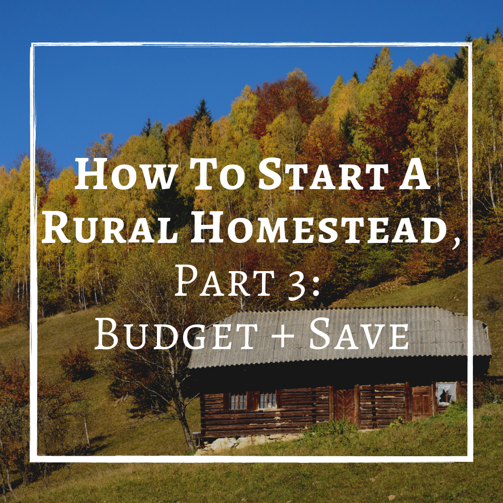 How TO Start A Rural Homestead Part 3 Budget and Save.png