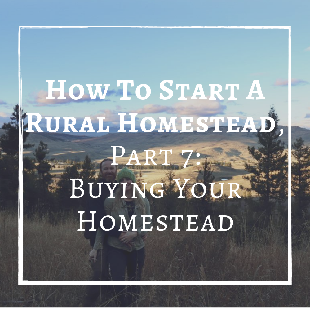 How To Start A Rural Homestead Finding Property Finding Land Buy Homestead Property