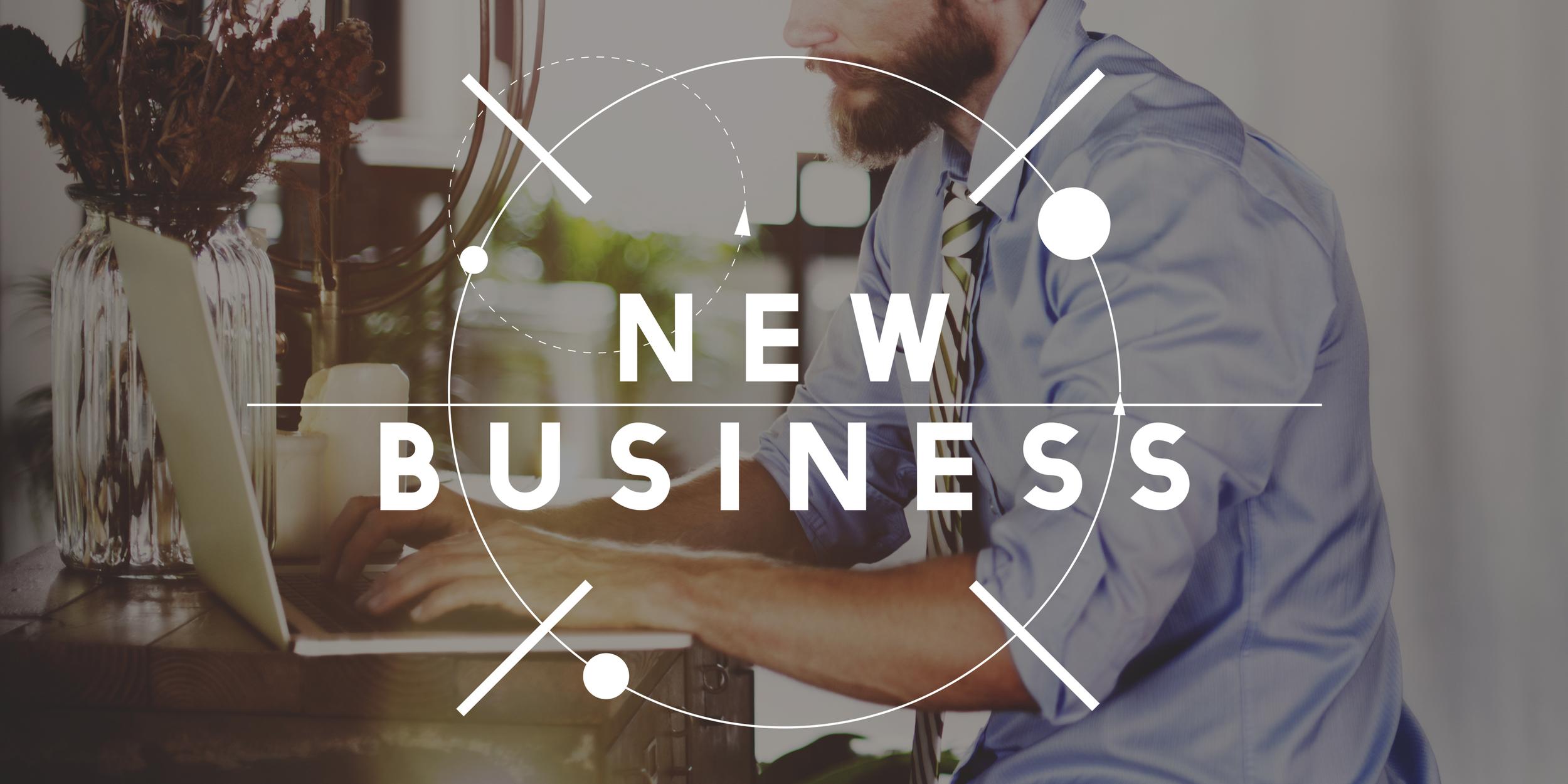 SERP Matrix New Business and Website