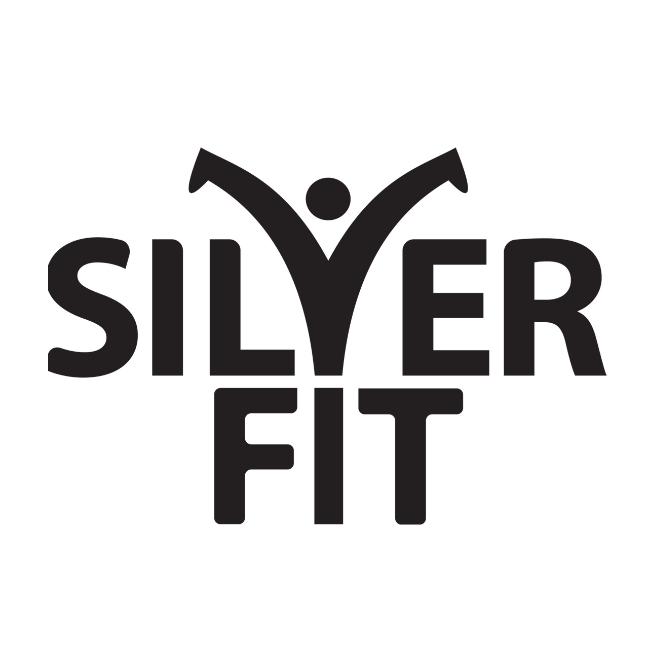silverfit+logo+copy.jpg