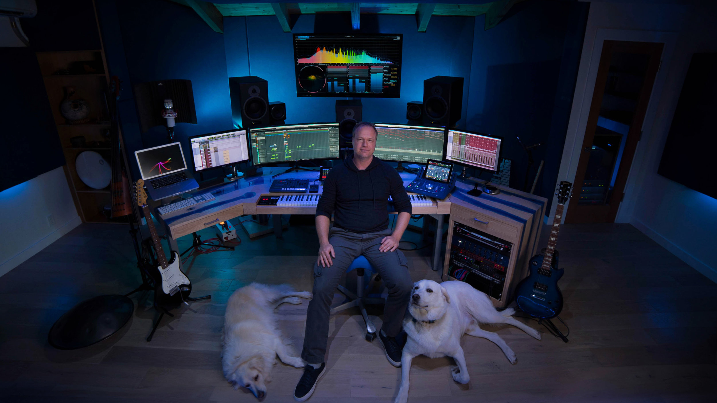 KP studio dogs.jpg