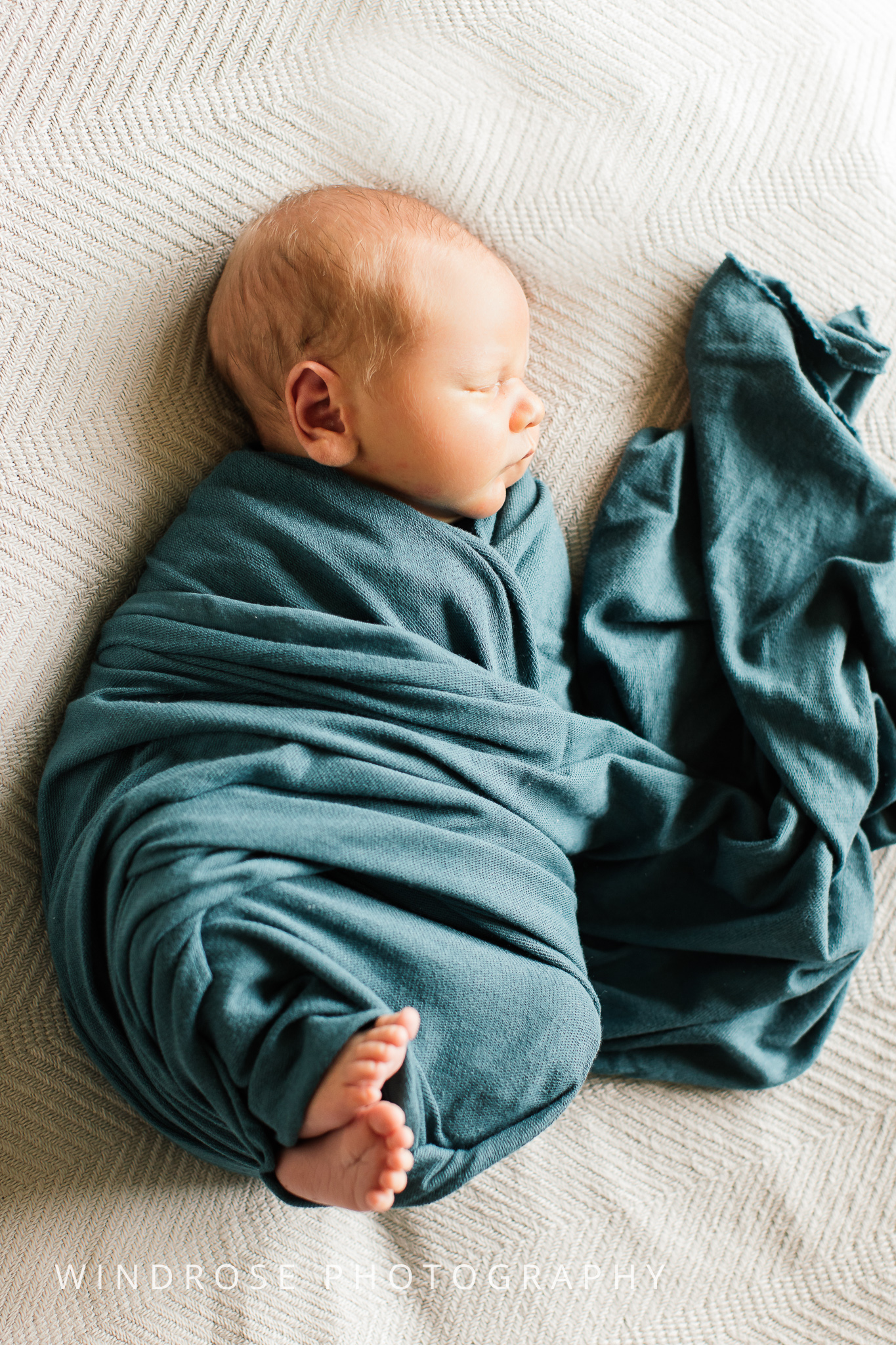 Newborn-Portraits-Rochester-MN-1.jpg