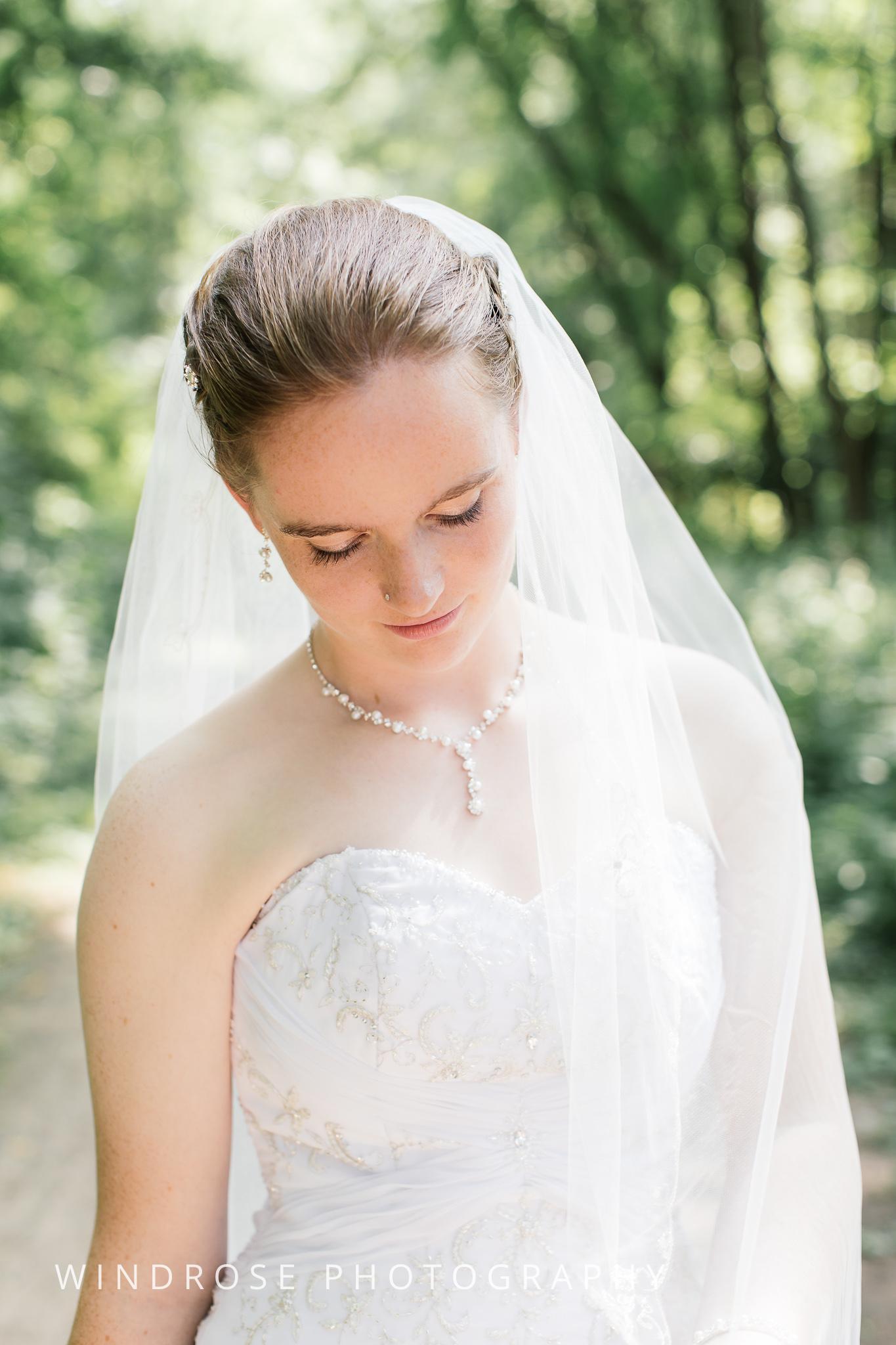 Wedding-Dakota-Lodge-St-Paul-MN-12.jpg