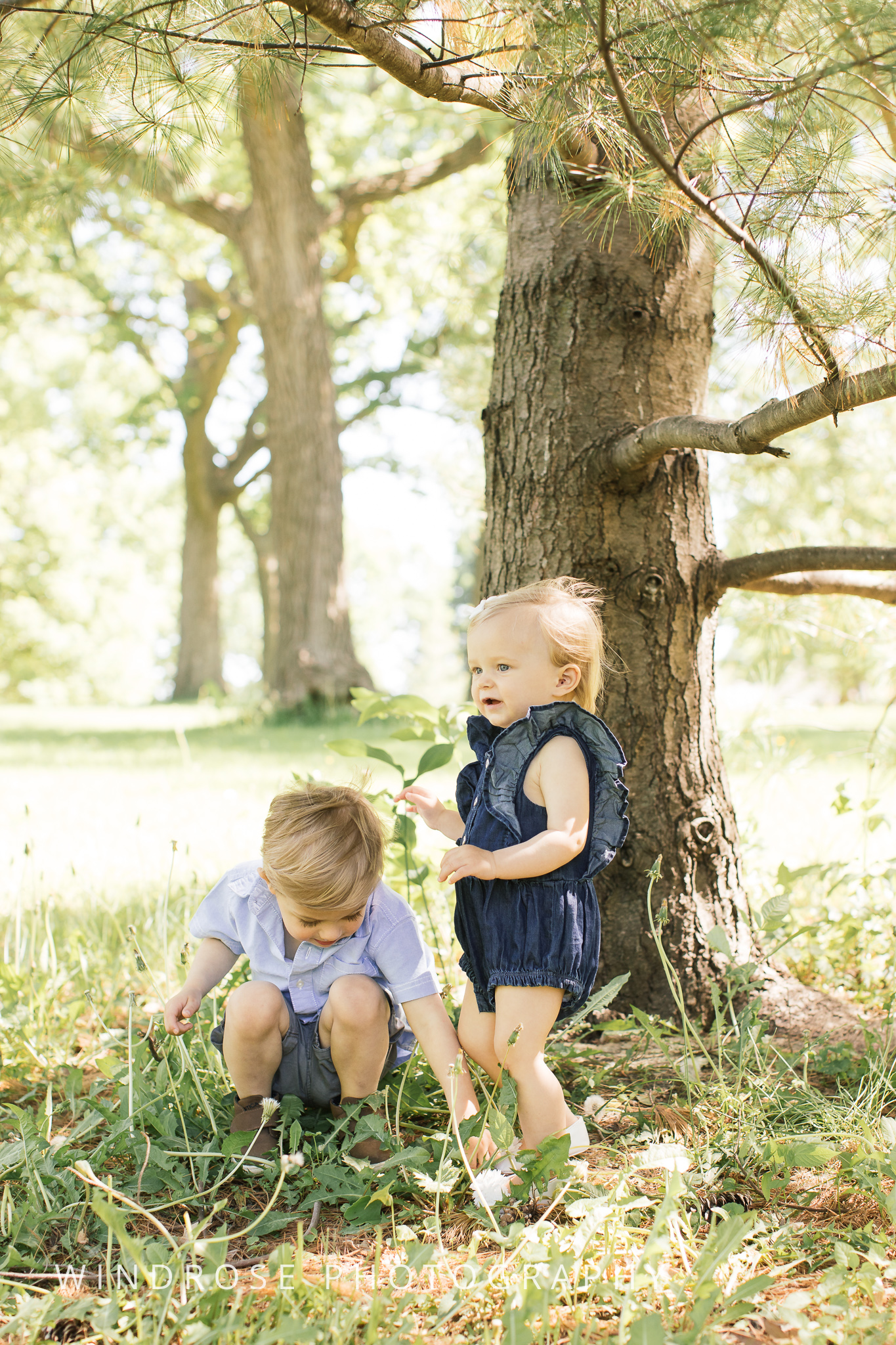 Family-Photo-Minneapolis-MN-3.jpg