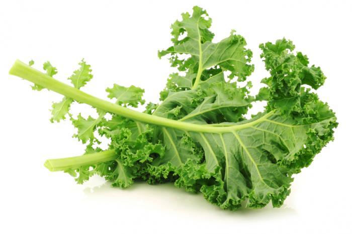 Curly-Kale.jpg