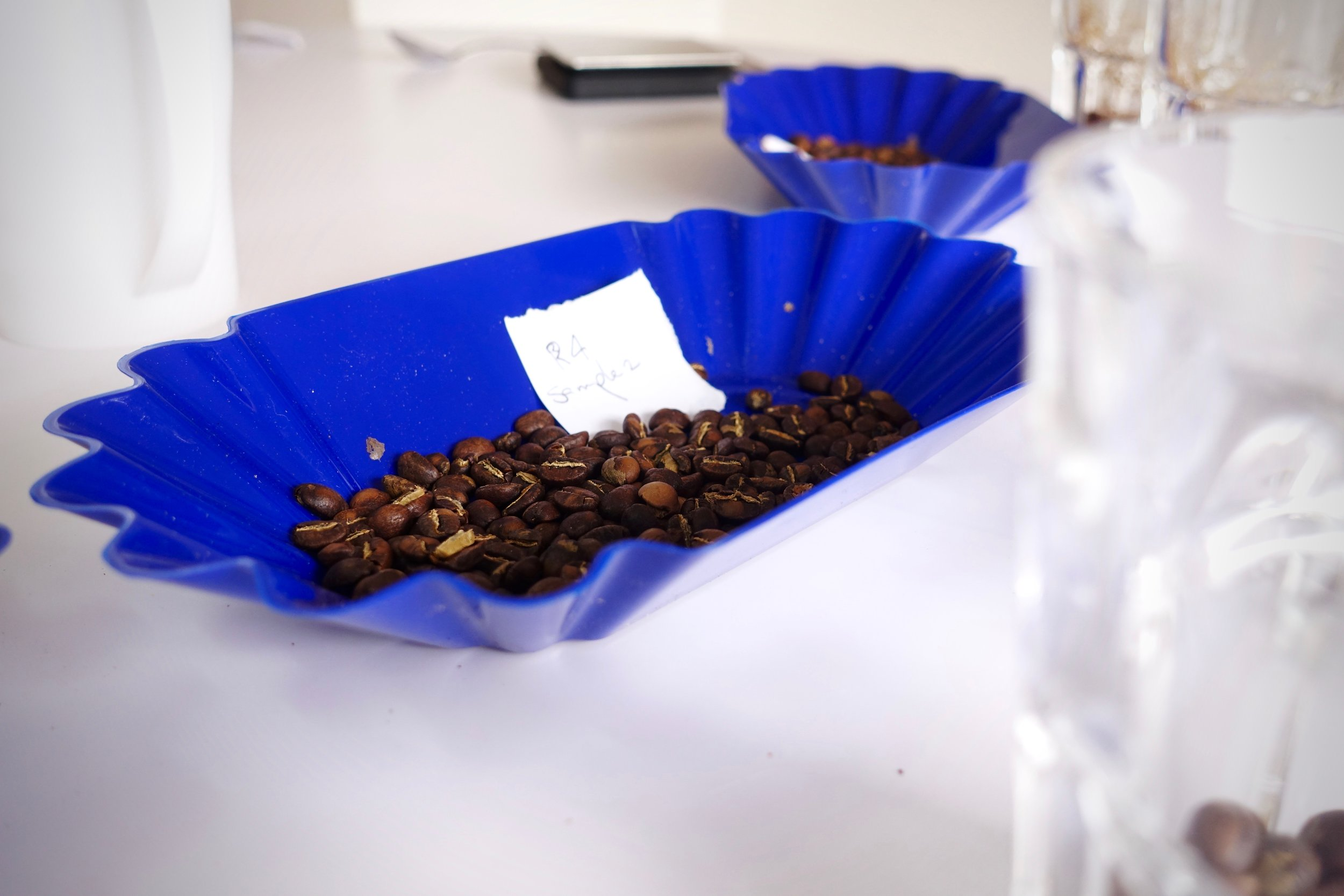 Always an exciting time cupping fresh samples.