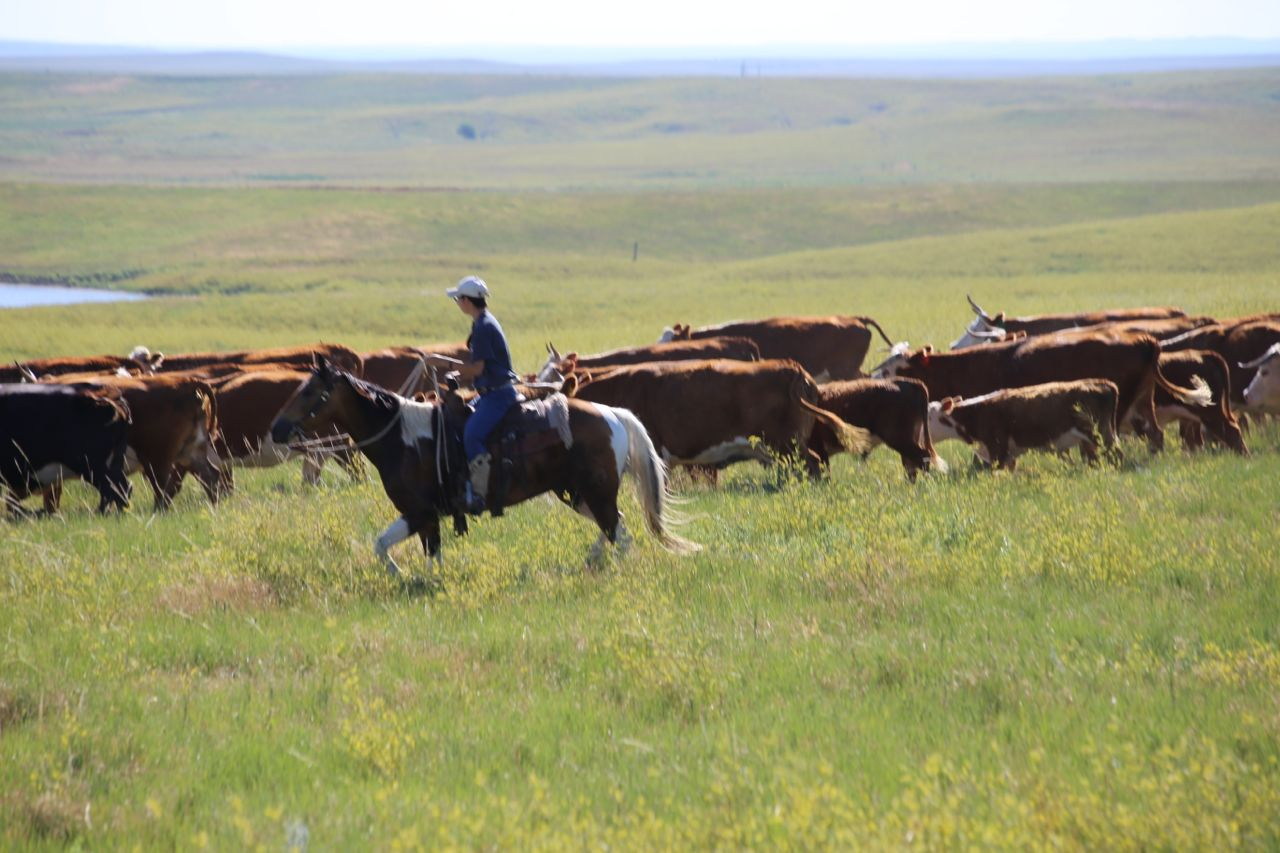 FAITH AND AGRICULTURE - Rainbow Bible Ranch, has from the founding, realized the value of sharing life on a