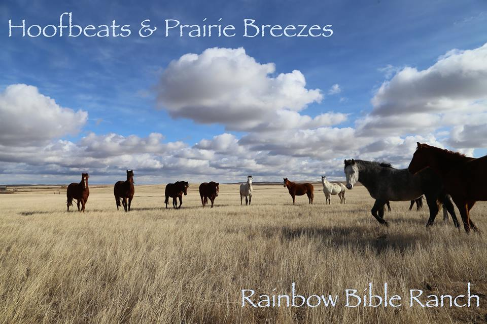 """RAINBOW BIBLE RANCH CELEBRATING 40 YEARS OF MINISTRY AND OUTREACH Watch for more information on """"HOOFBEATS & PRAIRIE BREEZES"""" ... THE EVENT"""
