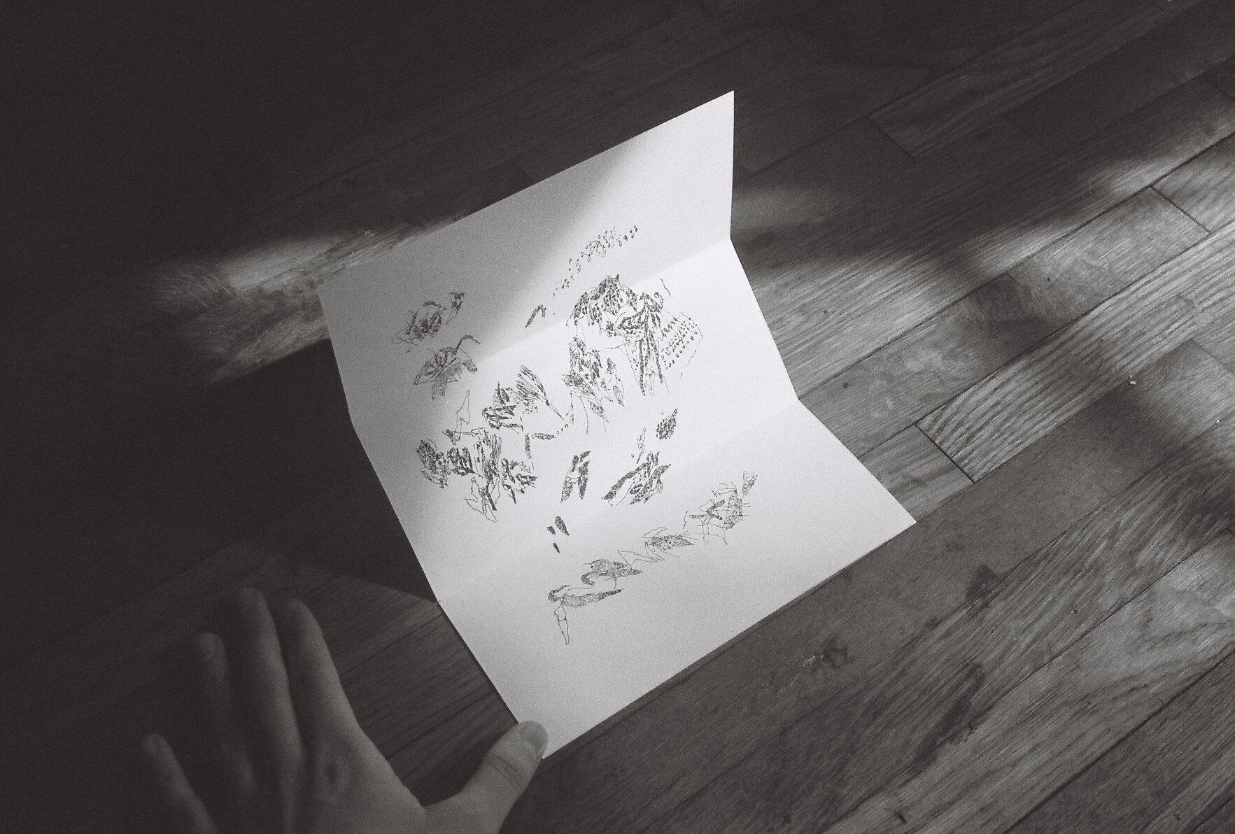 winterdrawings.1.jpg