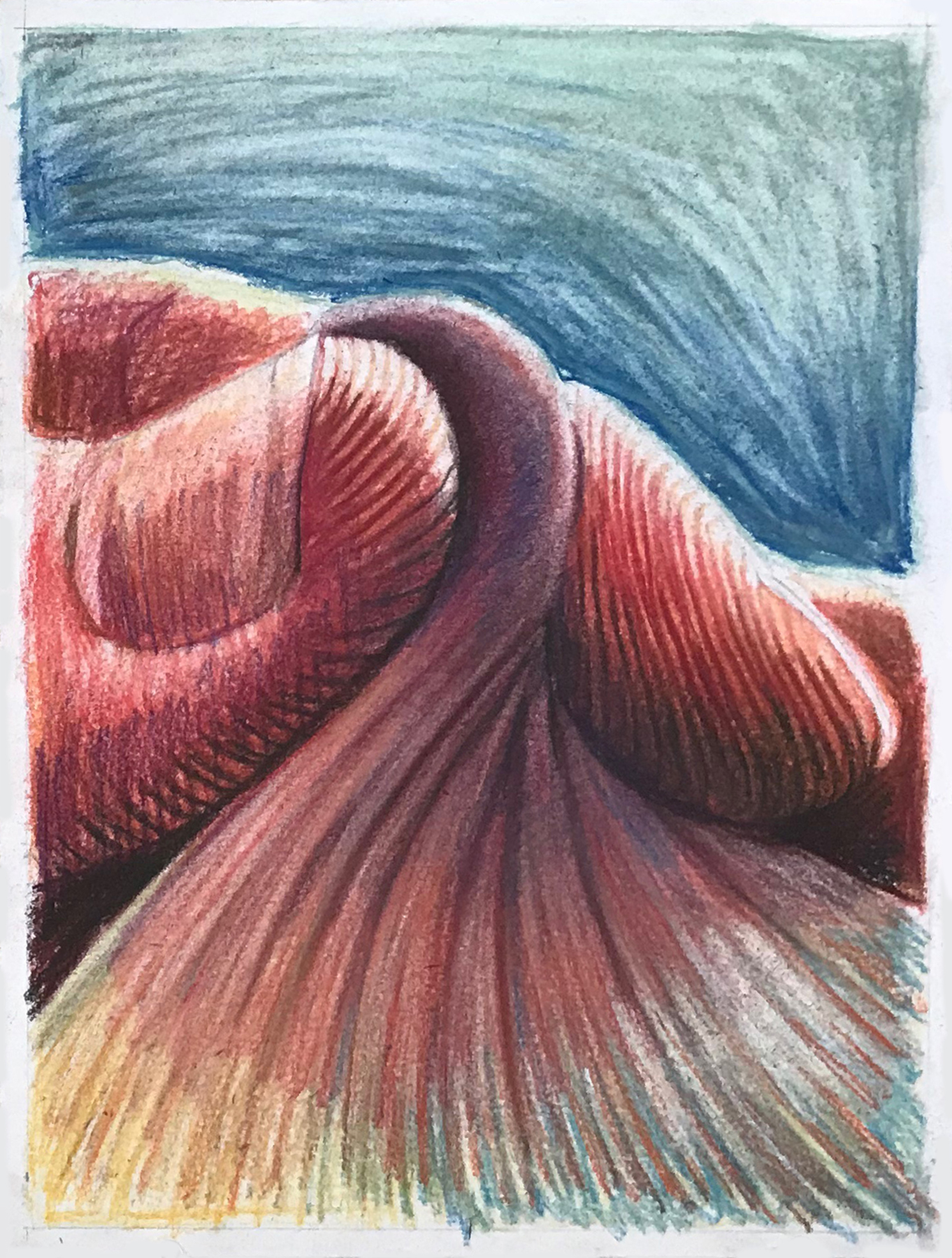 Twist   conté crayon and pastel on paper  9 X 12 inches  2019