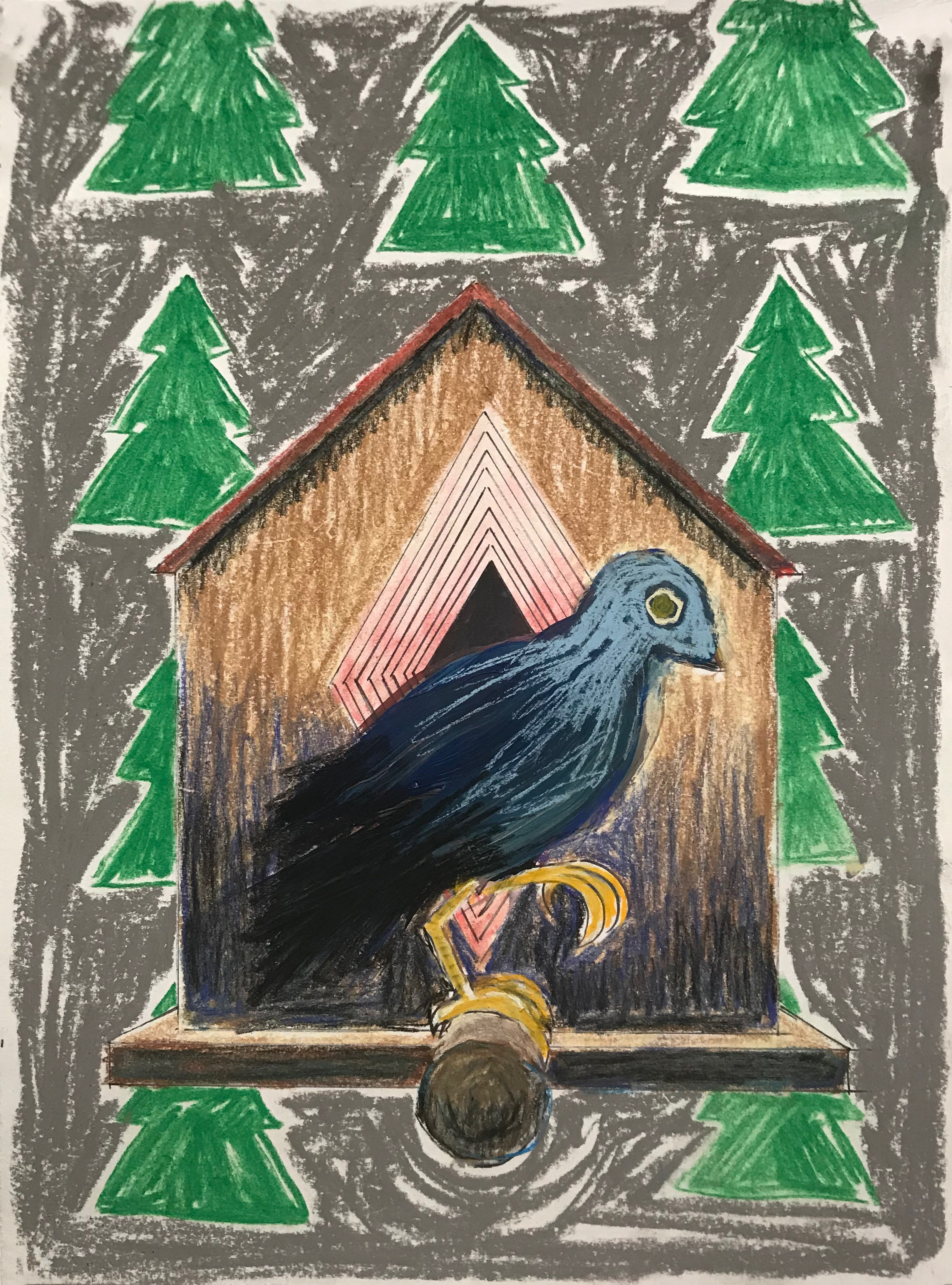 Birdhouse Dream   ink, acrylic, and pastel on paper  9 X 12 inches  2019