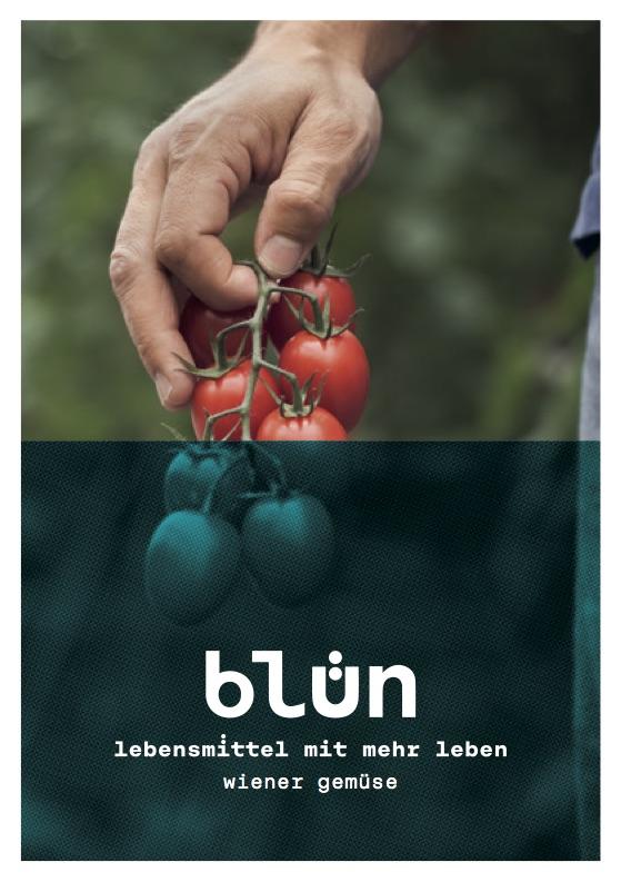 bluen_A5_Folder.jpg