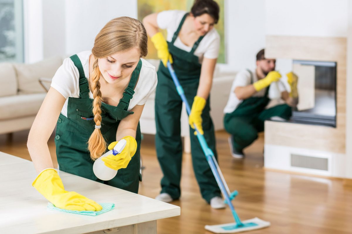 1 Cleaning Services Minneapolis | 5-Star Maid Service St ...