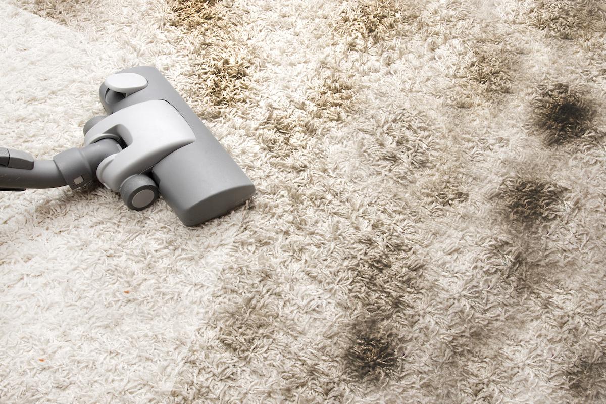 Dirty Carpet.jpeg