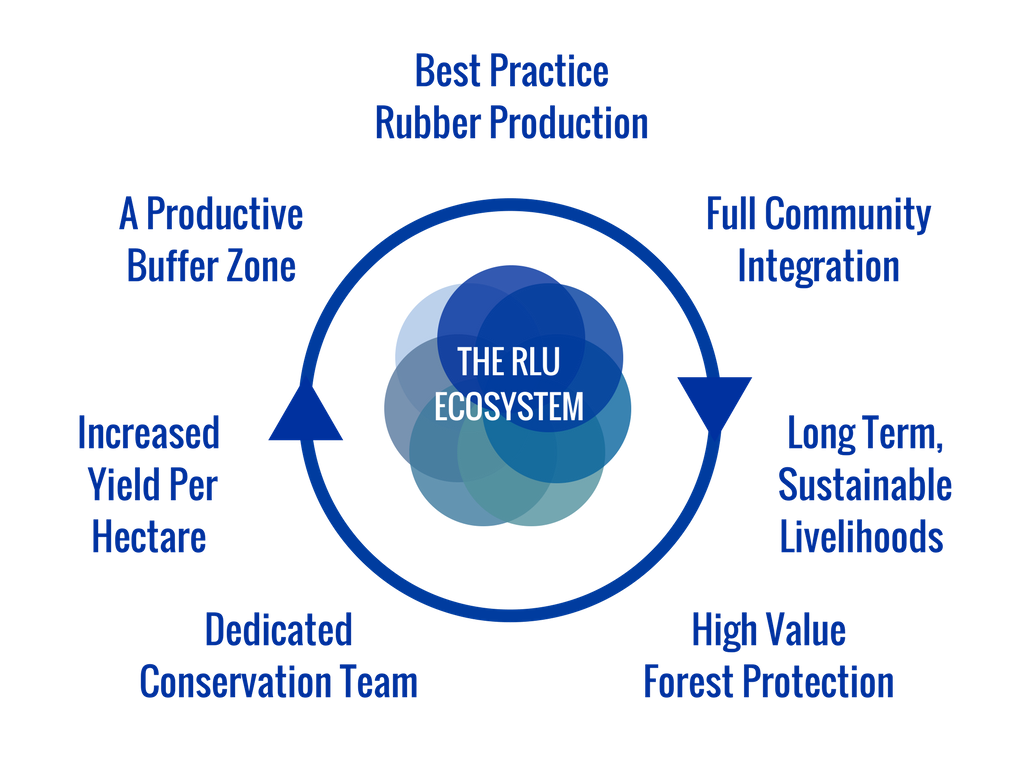 RLU sustainability wheel (2).png