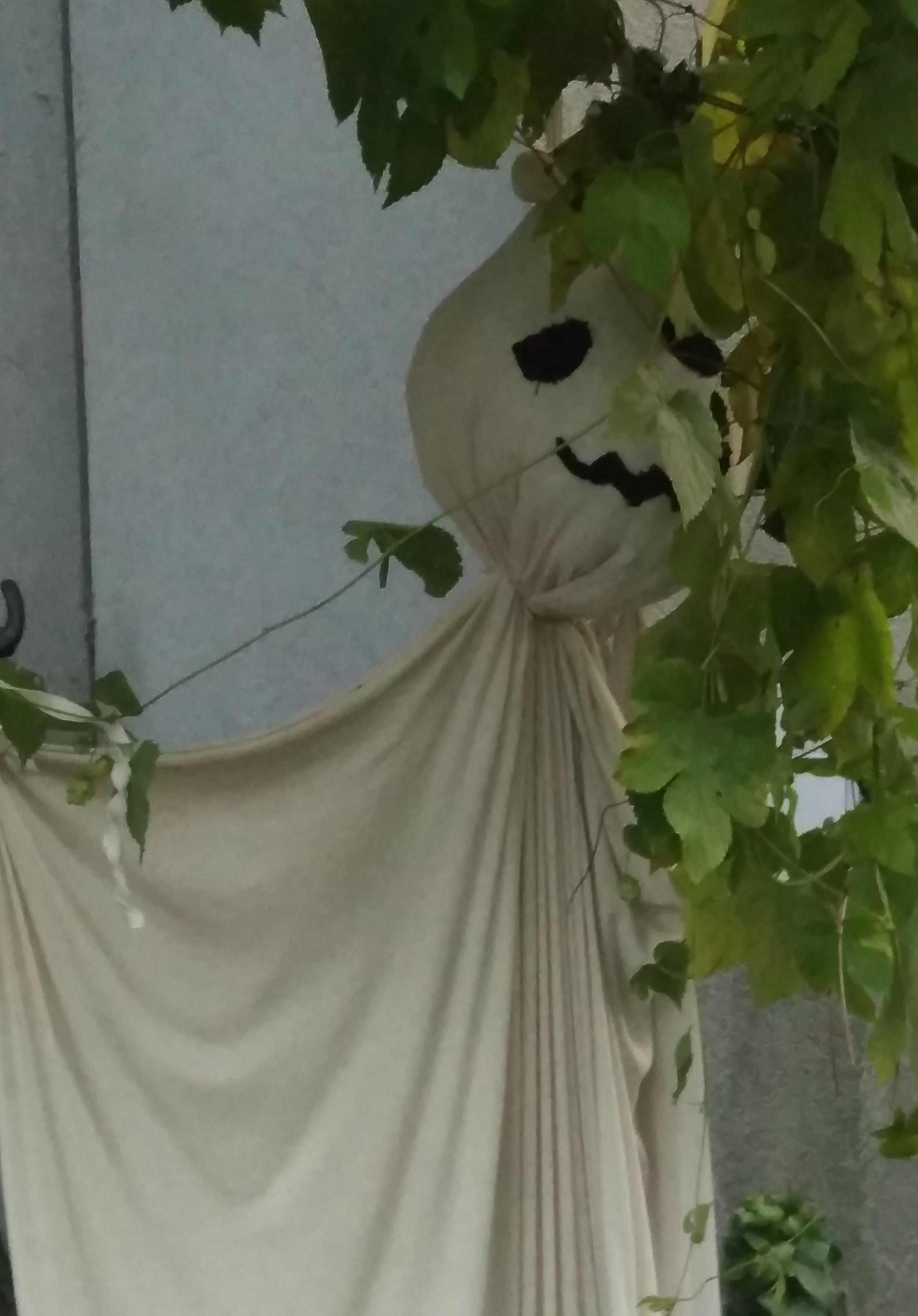 halloween_haus3.jpg