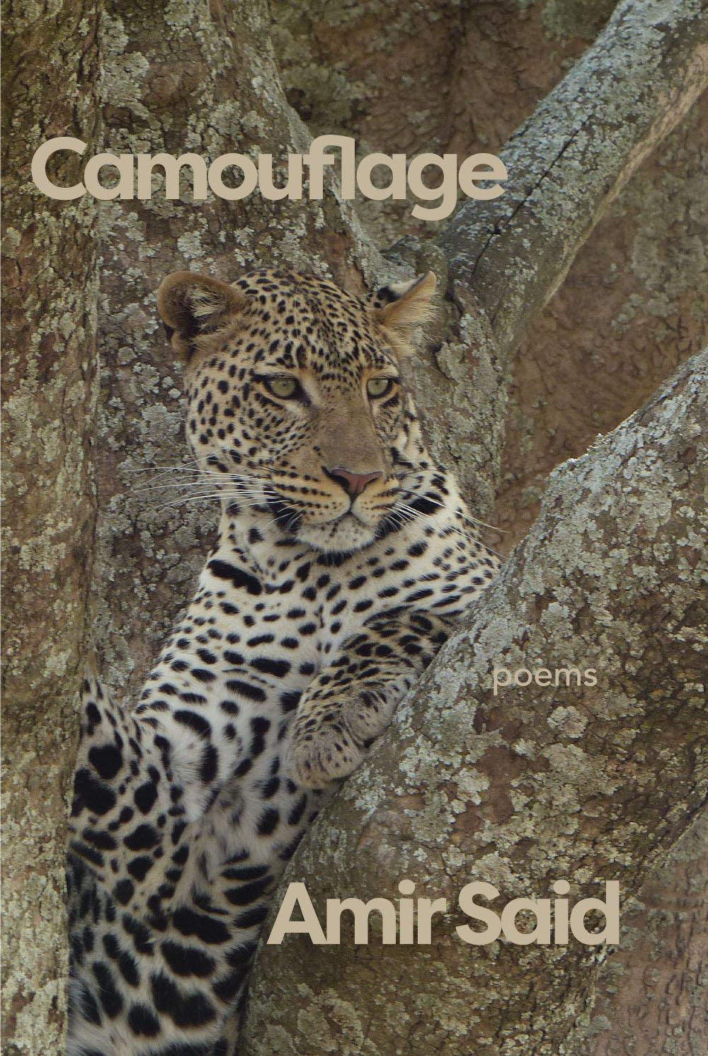 Camouflage_SB_thumb.jpg