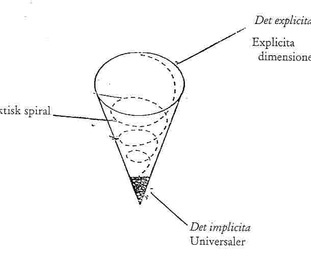 spiraldia.jpg