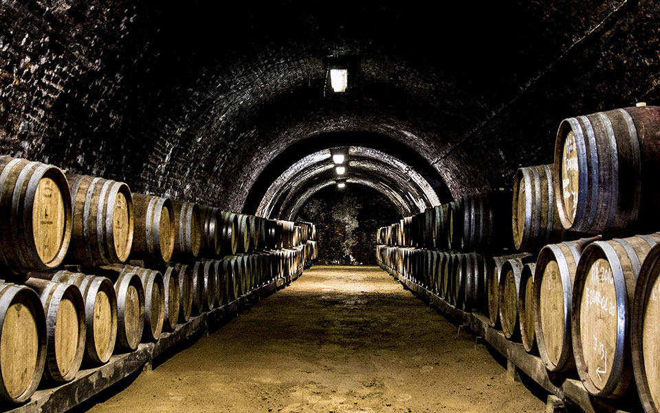 In Vino Veritas: Unearthing the Delicious Truth About Hungarian Wines - Budapest Local, September 2018