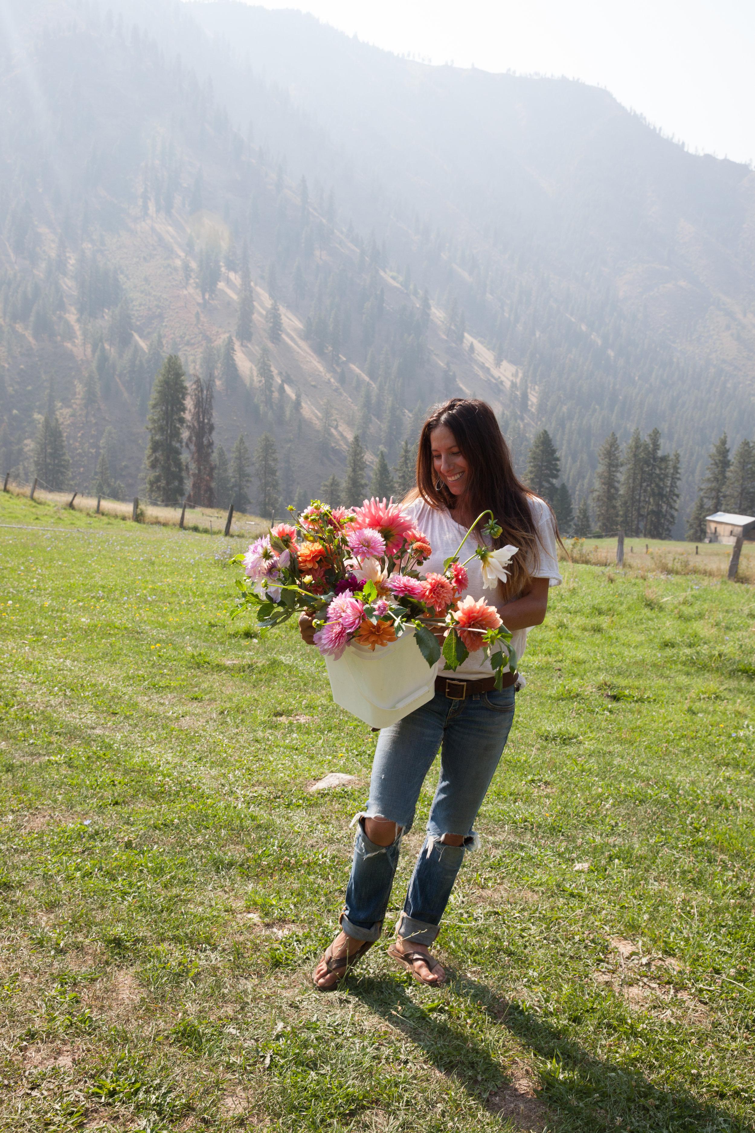 flowers (71 of 274).jpg