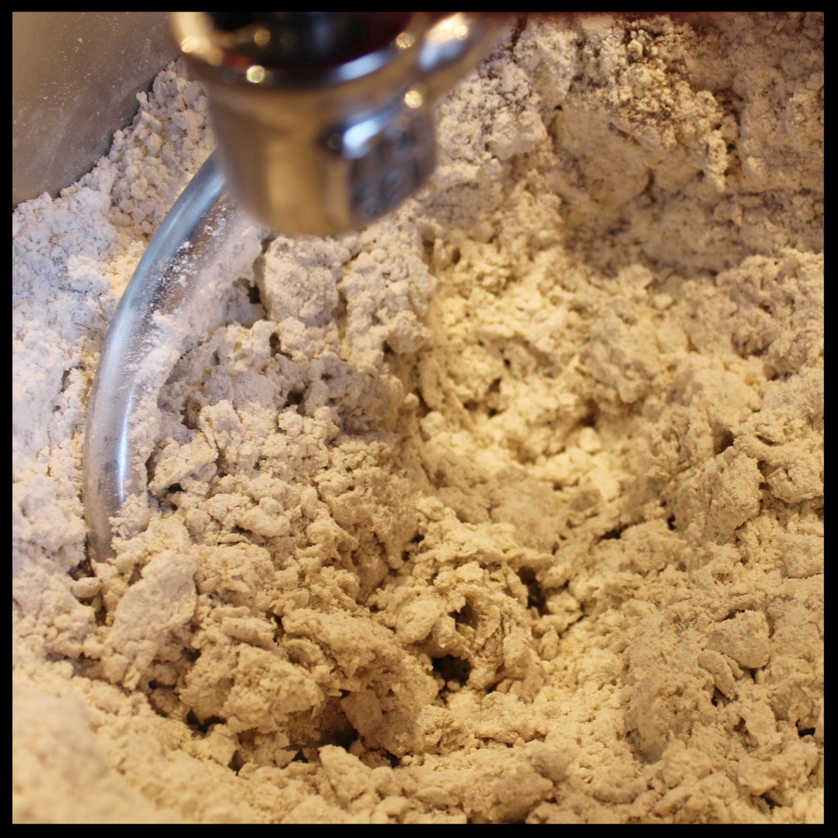 4. Mix on medium until your dough looks like dry clods of dirt, as above. If doing by hand, mix until it's shaggy.