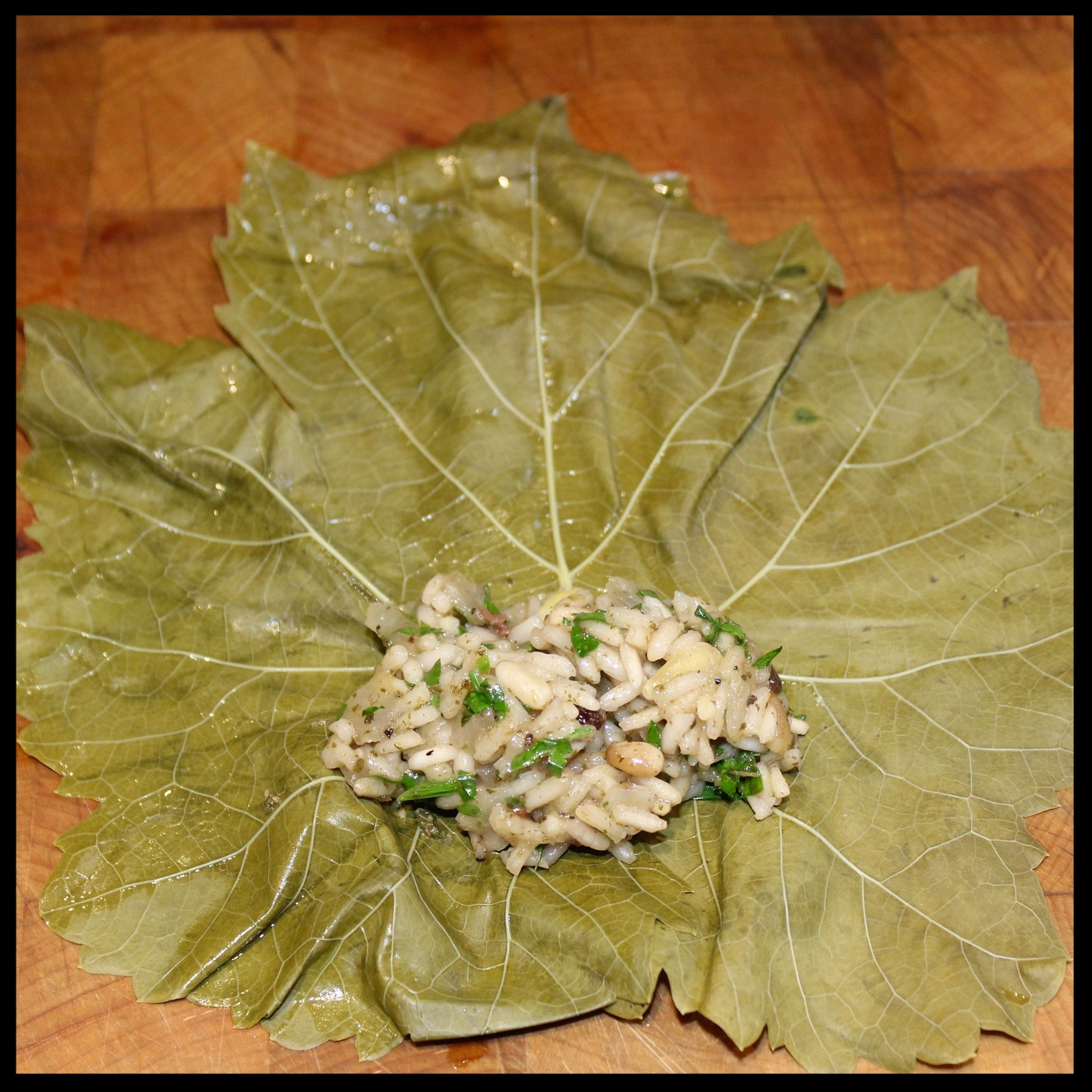 9.  Try to align, or even overlap, the bottom of the leaves.  Put a generous tablespoon of the filling right over the stem area.  10. Carefully fold the bottom over the filling, just to its edge.