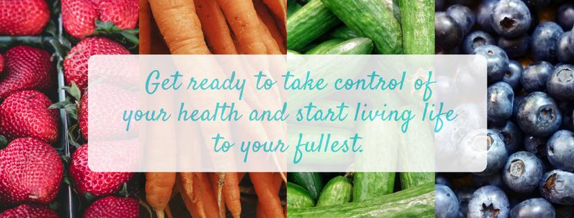 Lana Zinger Nutrition website banner.png