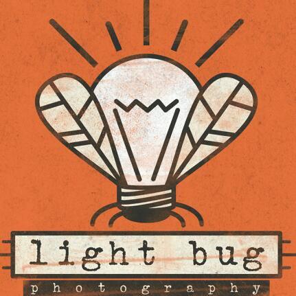 Light Bug Photography