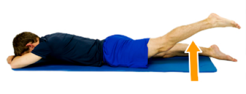 Hip-Prone-Hip-Extension.png