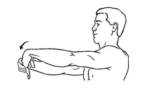 This picture shows one way to stretch the wrist extensor muscles.