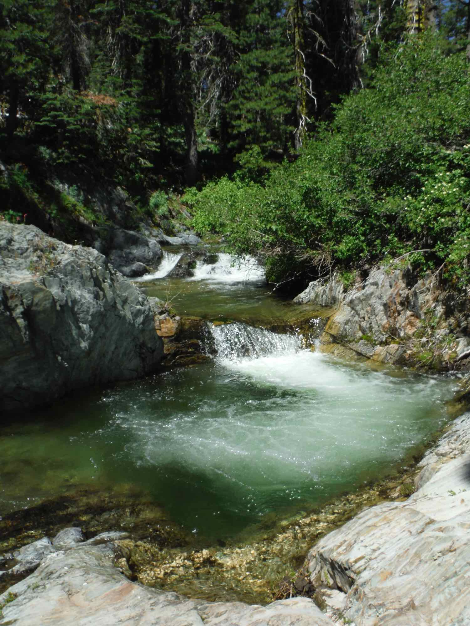 River in Gold Lakes Basin, with two short waterfalls.