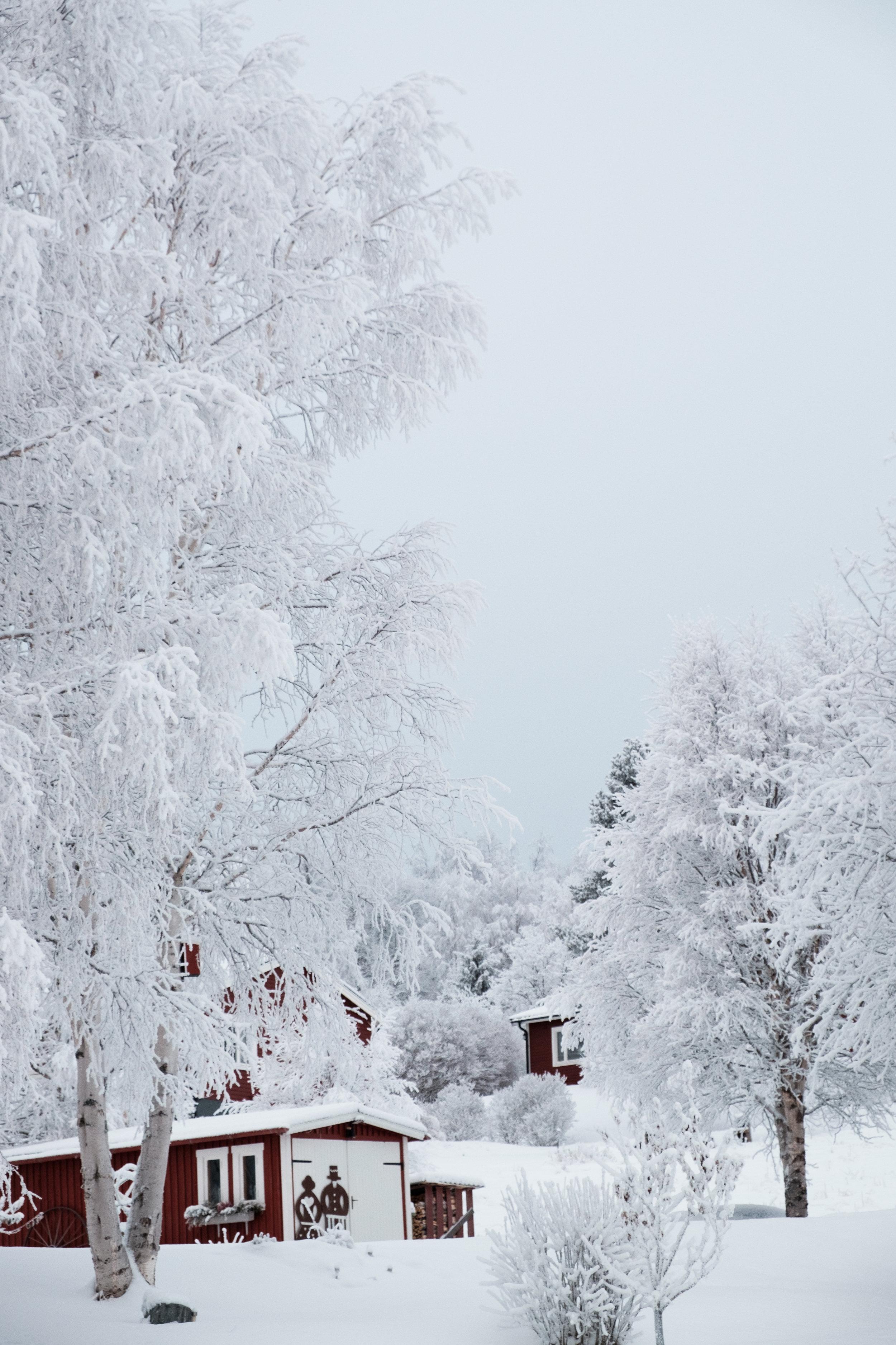 Sweden-190.jpg
