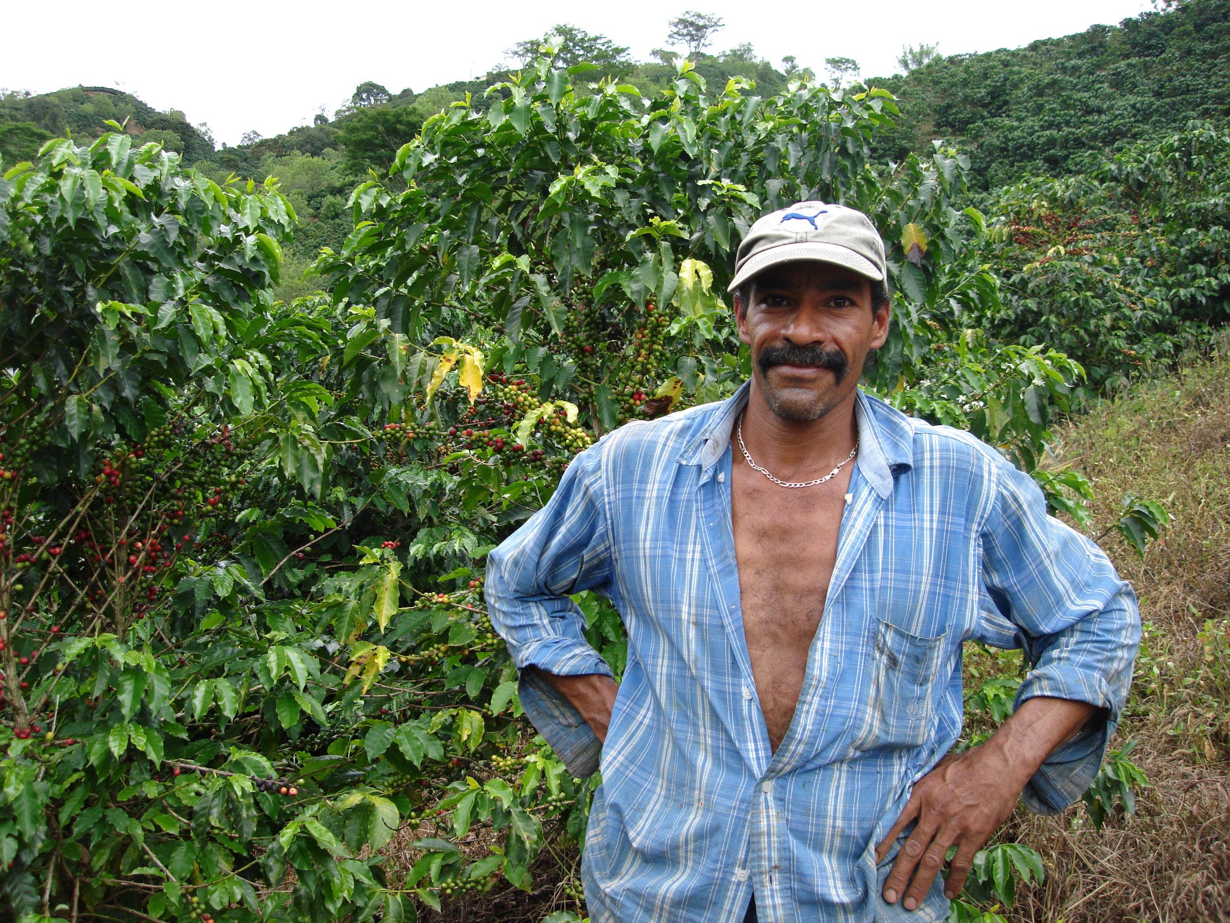 coffee_plantation_colombia-692.jpg