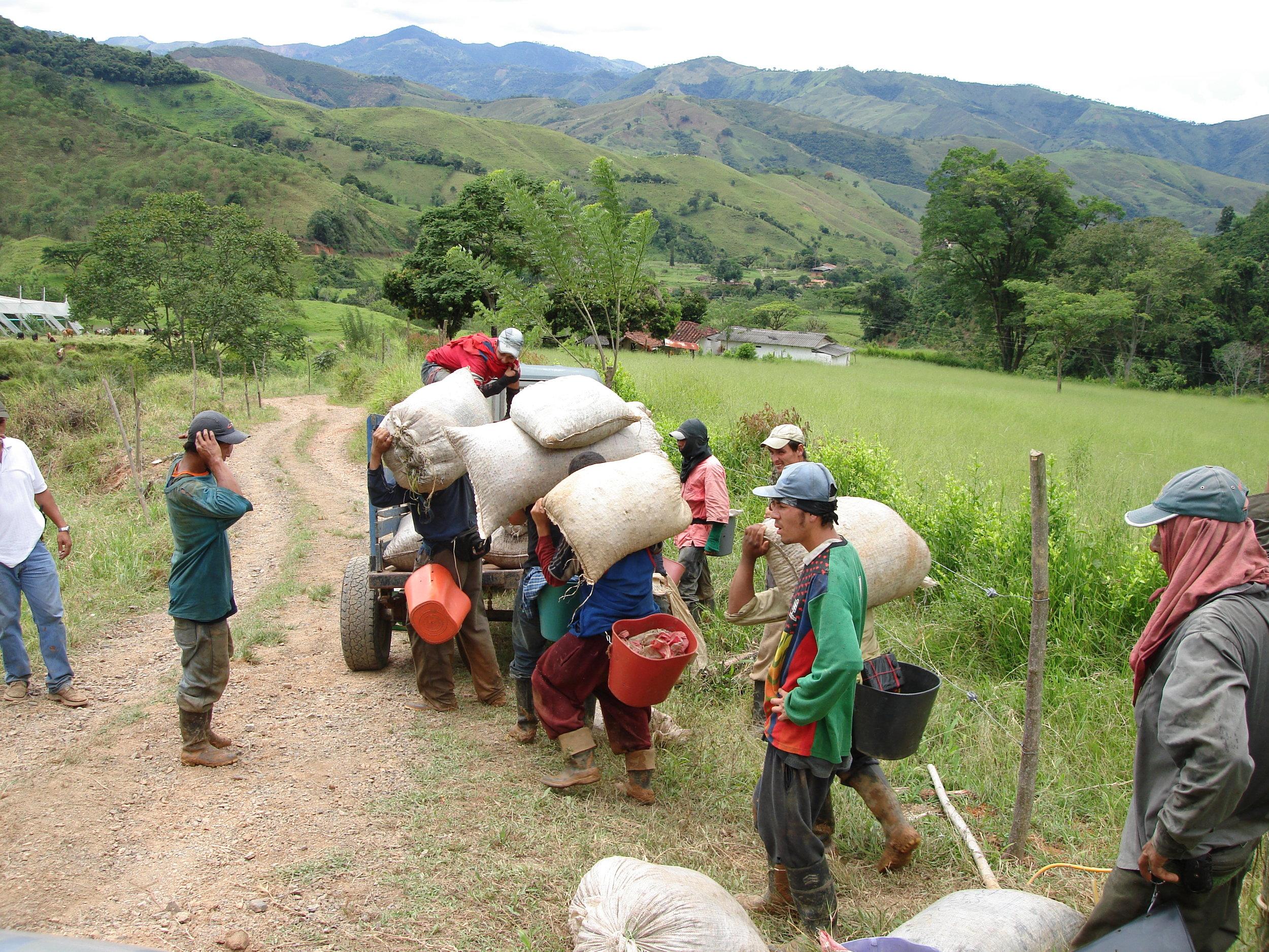 coffee_plantation_colombia-665.jpg