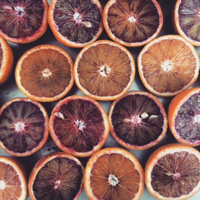 Blood Orange Sorbet 1.JPG