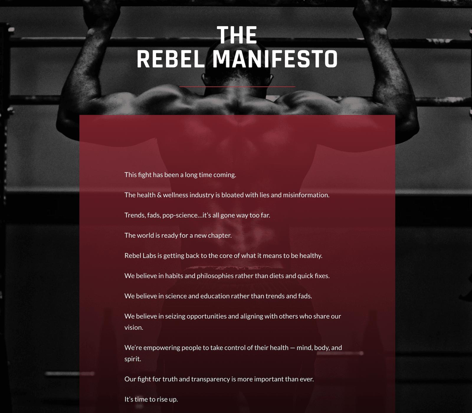 rebelmanifesto.png