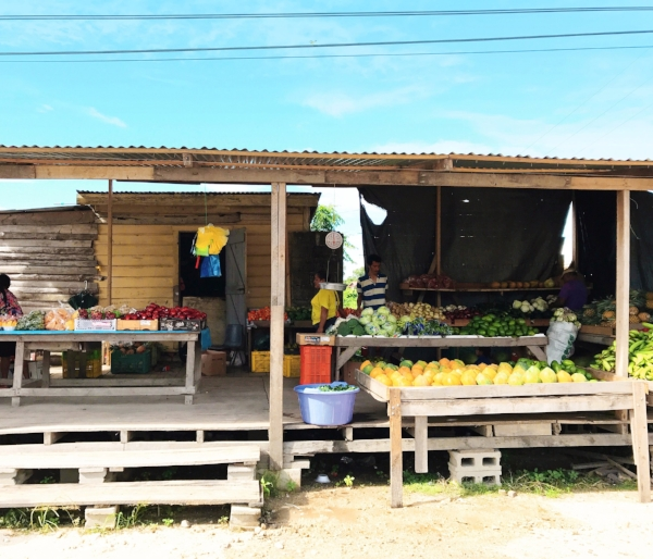One of the best places to get a glimpse of a country's food culture and daily life is to visit a street market. This little roadside market in Belize was filled with produce I'd never tasted, let alone even heard of, including big bags of juicy kenep fruits for only USD$2 that I carried around as snacks for the day.