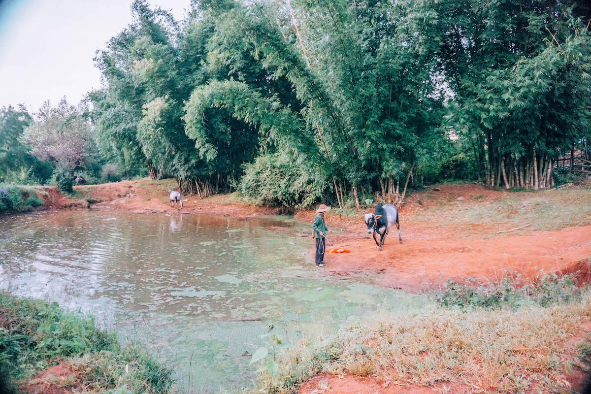 inle-lake-myanmar-trek-3.jpg