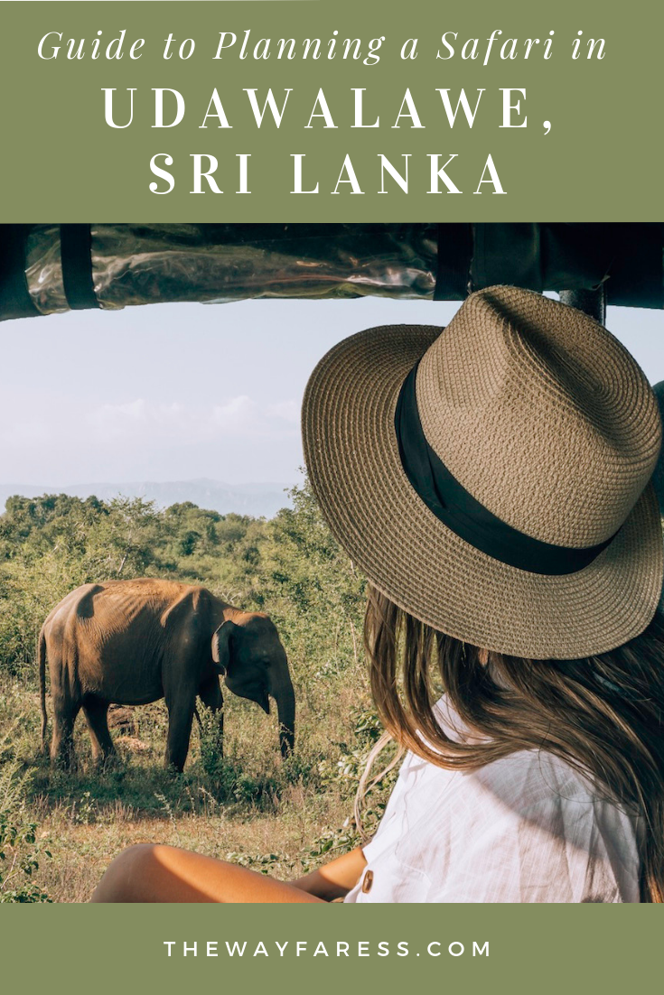 Planning a Safari in Udawalawe, Sri Lanka.png