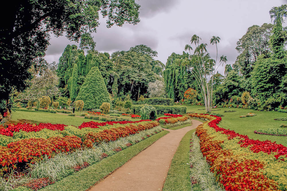 kandy-things-to-do-30.jpg