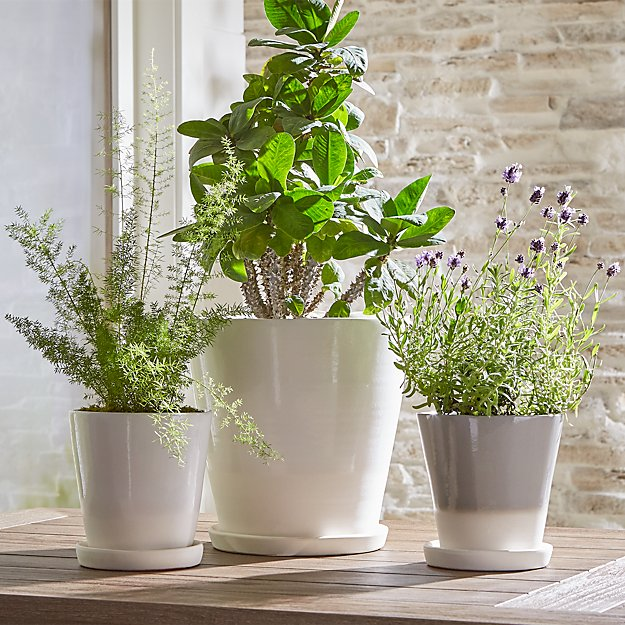 Dyp White Two Tone Planters   $6.97-$24.97