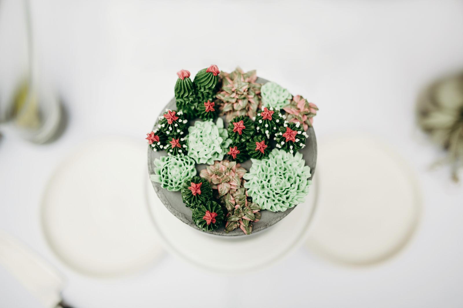 CACTUS CAKE.png