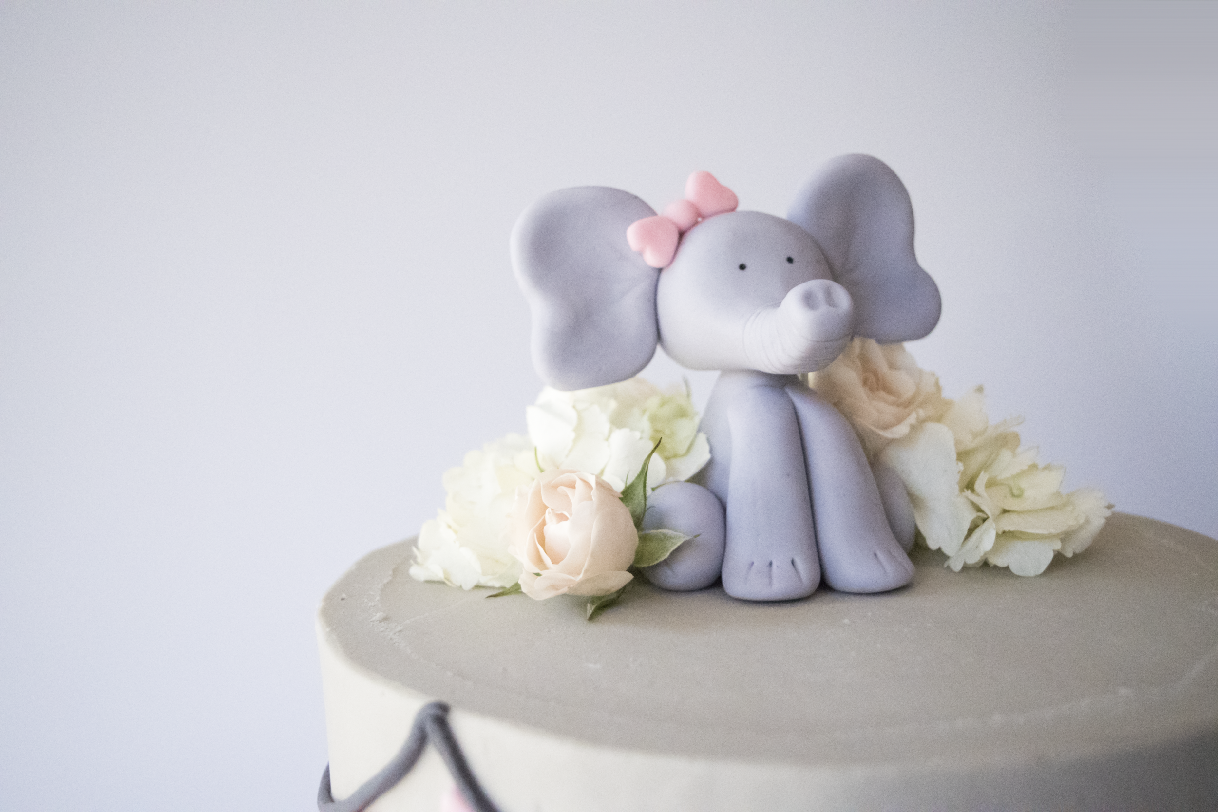 close up elephant baby cake copy.png